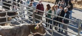 A la fira del bestiar de Canillo hi han participat 16 explotacions ramaderes de la parròquia.