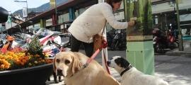 Una dona amb dos gossos en una imatge d'arxiu.