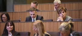 Parlamentaris demòcrates i liberals en una sessió del Consell General.