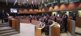 Els consellers generals van fer un minut de silenci abans de l'inici del ple en record de l'exconsellera i exministra Susagna Arasanz.