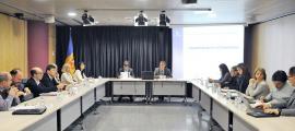 La reunió constitutiva del Consell Andorrà d'Estadística, el febrer passat.