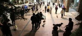 Propietaris amb les seves mascotes en una concentració contra la taxa de tinença de gossos.