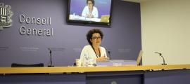 La consellera general del grup parlamentari liberal, Judith Pallarés, va justificar ahir la presentació de l'esmena a la totalitat.