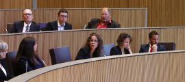 Els consellers generals del PS en una sessió parlamentària.