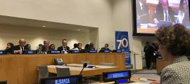 L'aprovació del pla s'ha fet a iniciativa de la ministra d'Afers Exteriors, Maria Ubach.