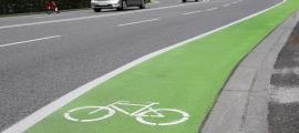 El tram verd que indica als visitants el carril bici de la carretera.