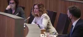 La ministra de Medi Ambient, Agricultura i Sostenibilitat, Sílvia Calvó, en una de les seves intervencions ahir al Consell General.