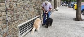 El propietari de dos gossos amb la bossa a la mà per recollir la tifa.