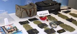 La marihuana que la policia va requisar al domicili del condemnat, al gener del 2017.