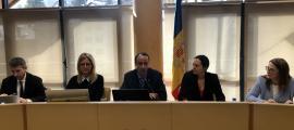 Un moment de la sessió del consell del Comú de la Massana, ahir.