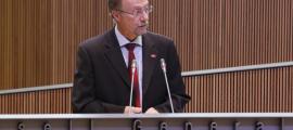Víctor Naudi, conseller general d'SDP.