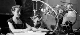 Una locutora dels anys 40 als estudis del roc de les Anelletes amb el gong i el pastor alemany Aquí, mascota de la casa.