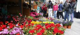 Plantes i flors van ocupar la plaça de Les Fontetes de divendres a diumenge.