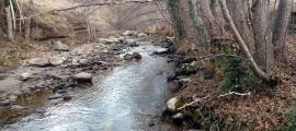 Una imatge del riu Flamisell pràcticament sec que va ser captada el 8 de gener passat.