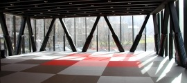 Sala d'arts marcials del CEO. Foto: Agències