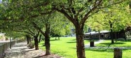 El Parc Central d'Andorra la Vella.