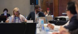 Planellas i Valdés, ahir a la Trobada d'Alt Nivell de Representants Ministerials i Institucionals de Cultura d'Iberoamèrica que té lloc a Sao Paulo (Brasil).